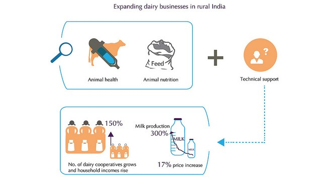 Dairy cooperatives support livelihoods of thousands of women