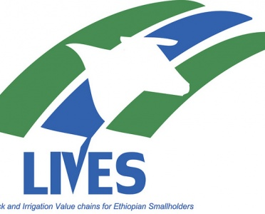 value chains | International Livestock Research Institute